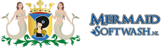 Mermaid Softwash